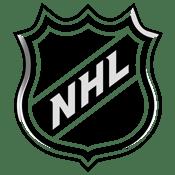 NHL National Hockey League Logo