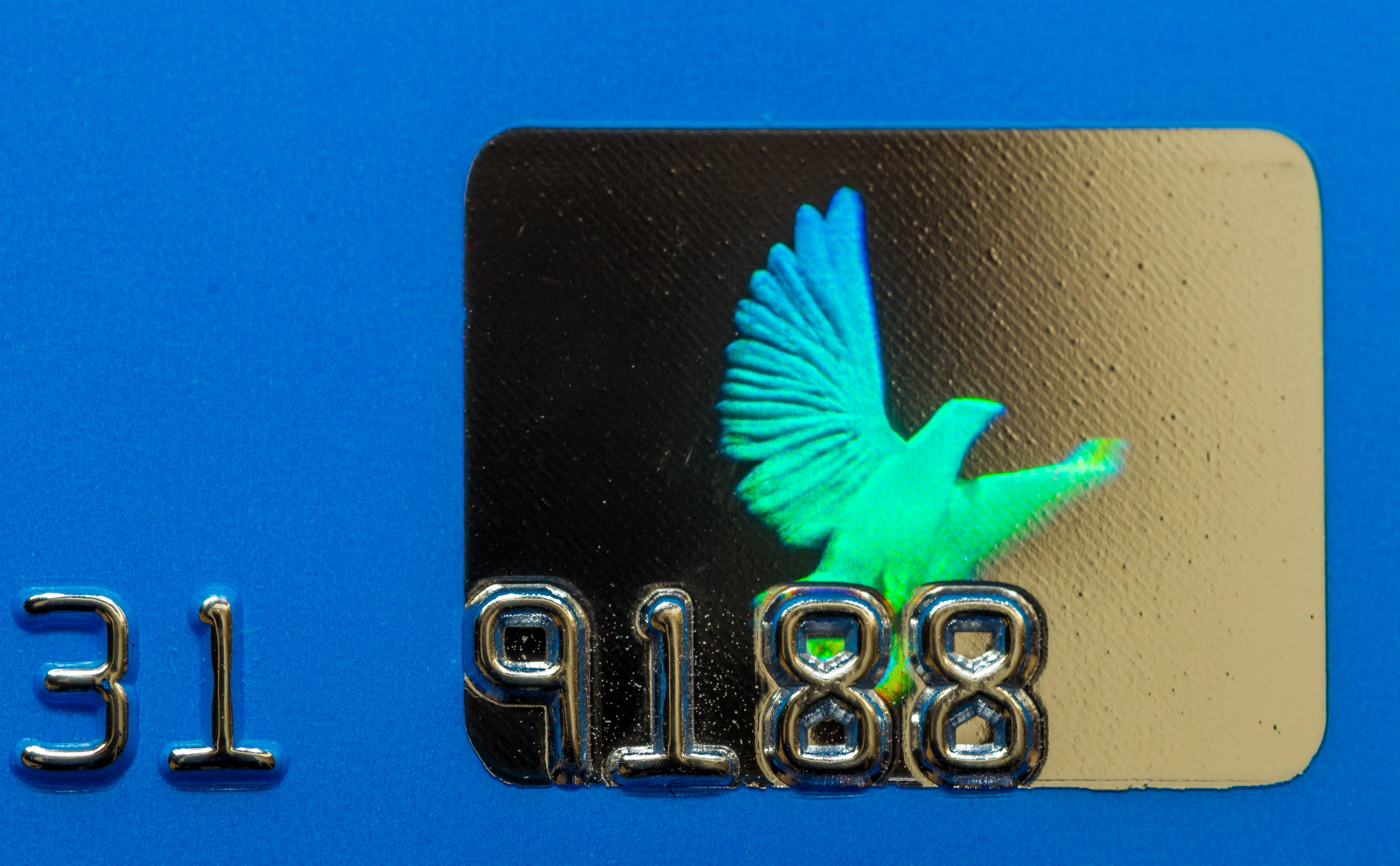 Faux Credit Card Styles with Foil Stamped Chip