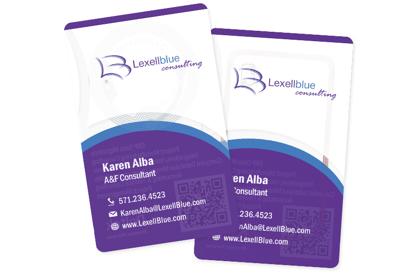 Level Blue Consulting Smart Card
