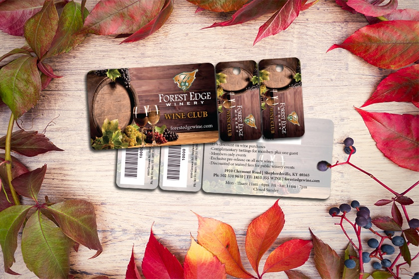 Amazing Membership Card Examples and Uses